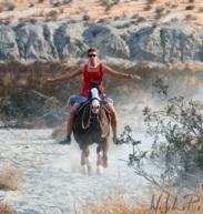 Natural Horse Riding